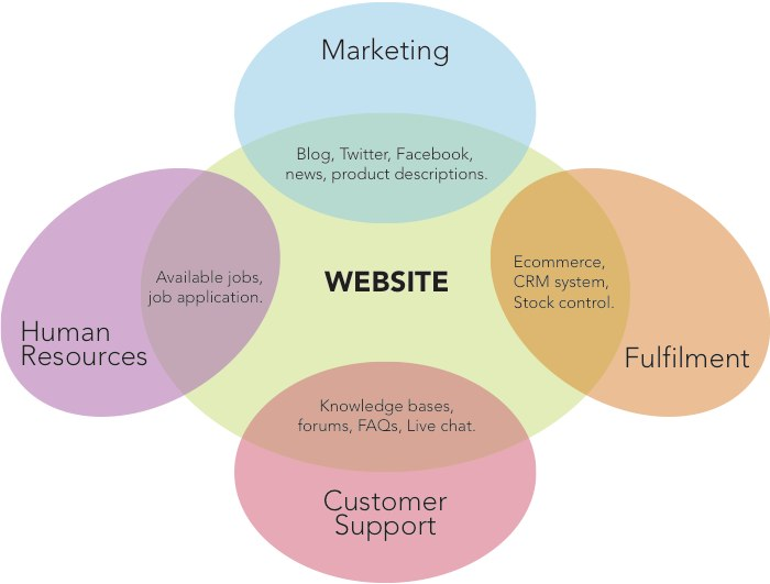 Venn diagram showing how the website is used by every part of the business