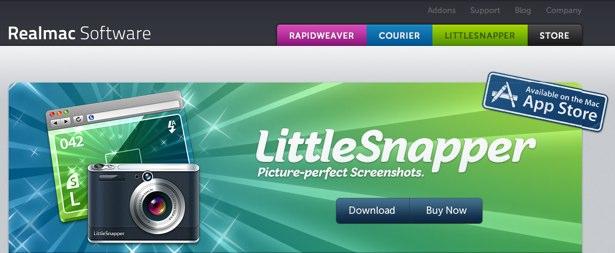 Little Snapper