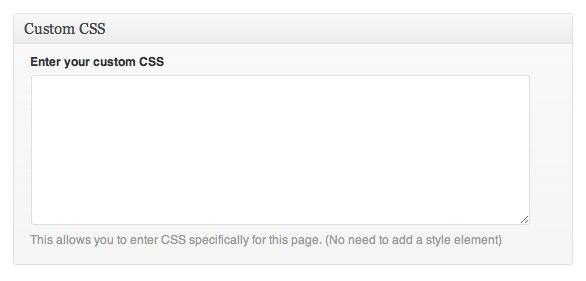 Custom CSS field in WordPress admin interface.