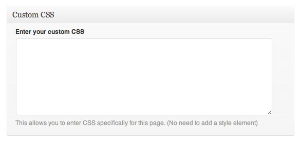 Custom CSS field in WordPress admin interface.