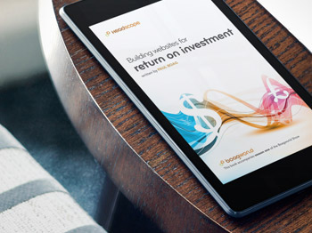 Building websites for return on investment book cover