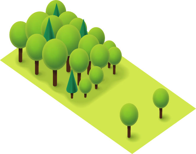 Minimum Viable Product (MVP): A basic garden